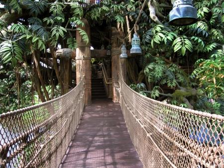 disneyland: Hong Kong,Disneyland