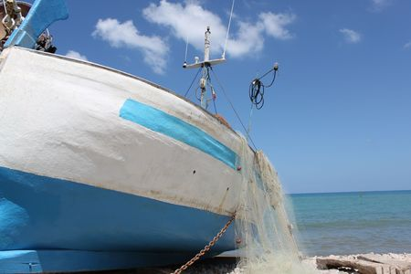 boat at the port, the fish fresh fish in Sicily Italy photo