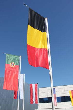Flags of countries of the European Union  photo