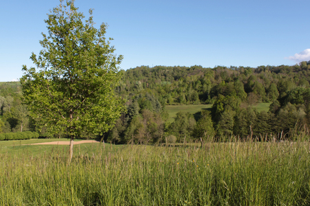 natural landscape with a view of green countryside