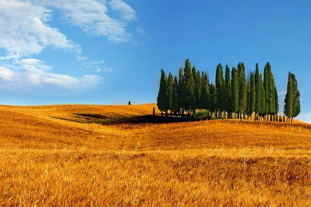natura: Paesaggio toscano Stock Photo