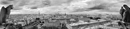 gothic architecture: Landscape of Paris seen from Notre Dame