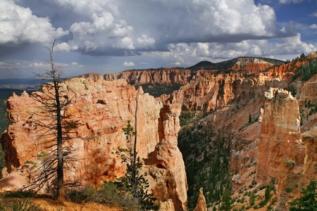 Great spires carved away by erosion in Bryce Canyon National Park, Utah, USA. photo