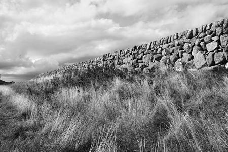 stock vista: Stone Wall - Black   Withe