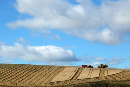 Straw bales in Scotland photo