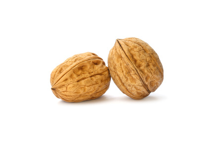withe background: Walnuts on the withe background