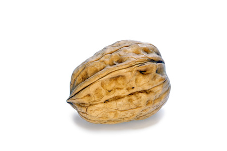 crux: Walnut on the withe background