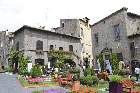etruscan: VITERBO, ITALY, MAY 4, 2014  Exhibition  San Pellegrino in Fiore in Viterbo   The event in San Pellegrino in Fiore sees the historic city of Viterbo with floral decorations in the streets and squares