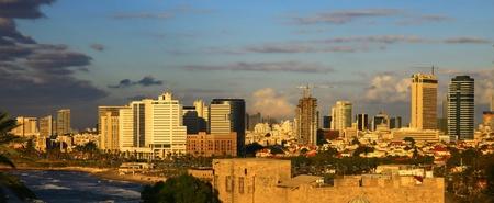 bird of israel: Panoramic View of the Tel Aviv, Israel. Twilight.
