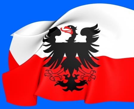 europe closeup: Flag of Deventer, Netherlands. Close Up.