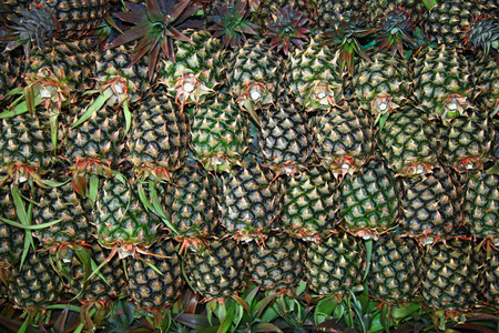 Heap of the Pineapples. Stok Fotoğraf
