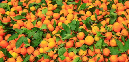 Pile of the tangerines.
