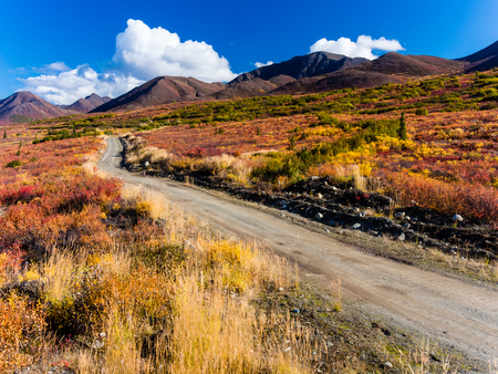Windy Creek Road in the Clearwater Mountains near the Denali Highway in the Alaska Range Standard-Bild