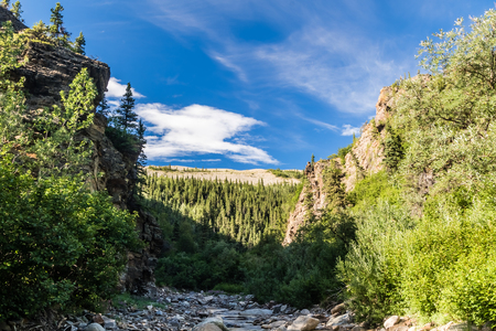 A rocky gorge extends miles up away from the Richardson Highway on this remote Alaskan creek Standard-Bild