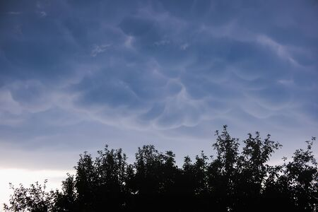 Looking up at Mammatus Clouds in the summer evening sky