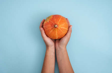 Top view of woman hands with pumpkin on blue background. Halloween, thanksgiving, harvest concept Stock fotó