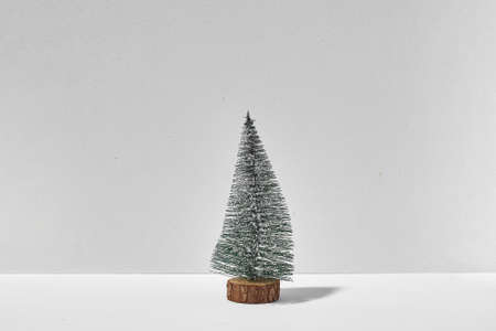 Small lonely christmas tree on white background with sunlight shadow. quarantine christmas