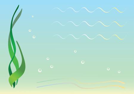 algas marinas: Fondo