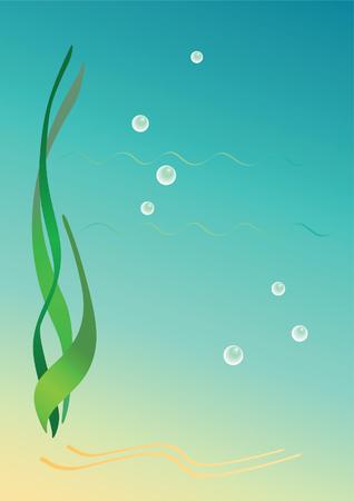 algas marinas: Antecedentes de algas marinas. Ilustraci�n vectorial