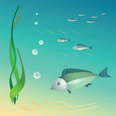 bottom line: The undersea world. Fishes, seaweeds, bubbles. Vector.