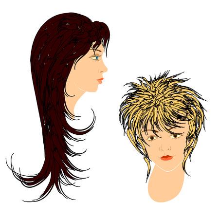 hairdos: Feminine hairdos. Vector.
