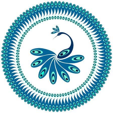 pluma de pavo real: Peacock. Patr�n decorativo de la placa. Im�genes vectoriales.