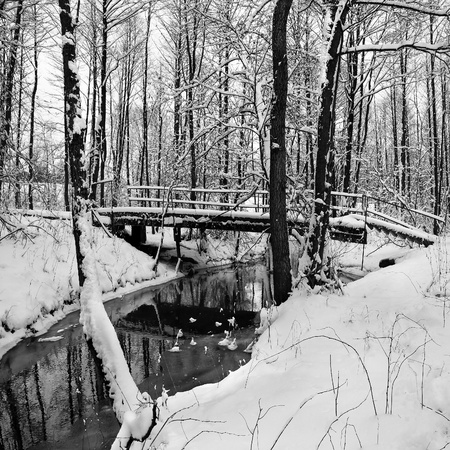 Winter landscape with small river and foot-path bridge. photo