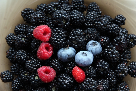 blackberry fruit: Fresh blackberries, raspberries, blueberries and one wild strawberry. Stock Photo
