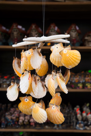 Seashells for sale at market   Stock Photo