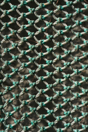 holed: Fishing net texture.