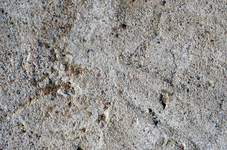 beton: Rough surface of concrete wall texture.