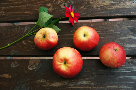 Red apples and flower on brown wooden boards.