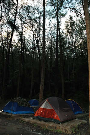 camping site: Camping site evening scene