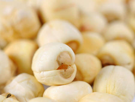 semen: tradizionale cinese erbe Sperma Nelumbinis o semi di loto vicino