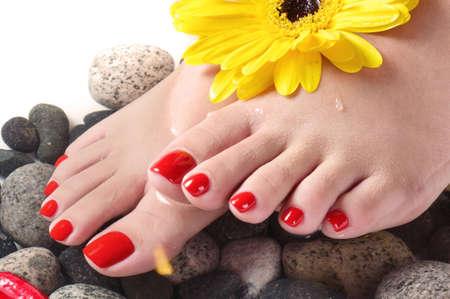 pedicure: stazione termale del piede vicino o macro con i fiori (orizzontale)