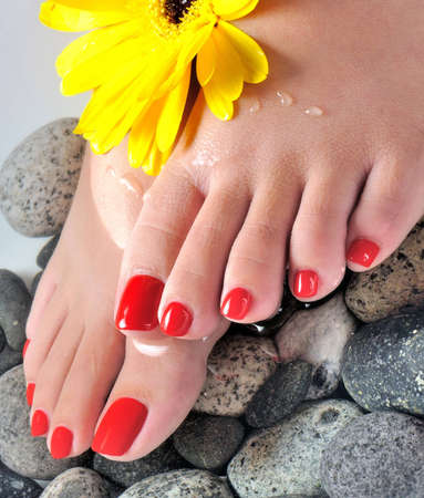 manicure and pedicure: foot spa close up or macro with flowers (vertical)