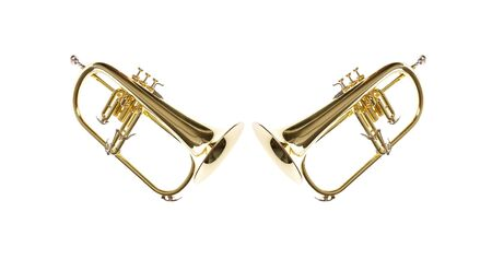 flugelhorn: Two gold yellow professional flugelhorn with moutphiece on white isolated