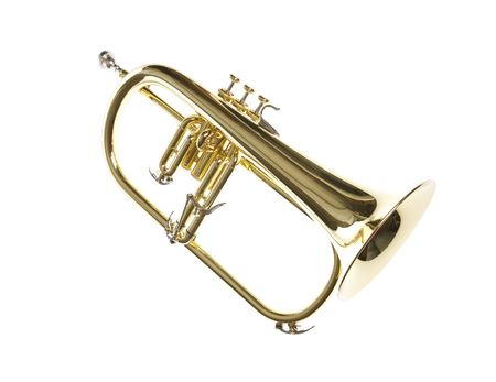 Gold yellow professional flugelhorn with moutphiece on white isolated