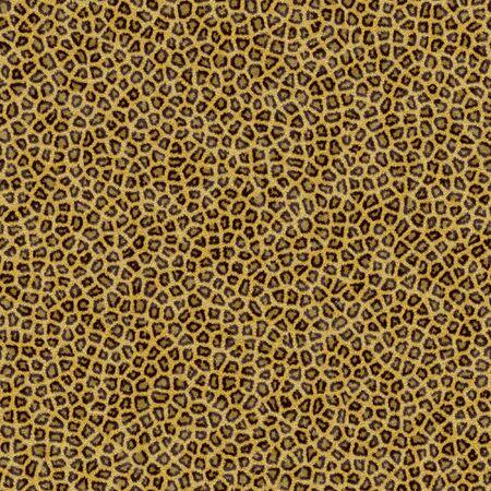 Illustration de Leopard fourrure Banque d'images - 6250396