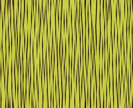 Illustratie van de tijger bont, naadloze