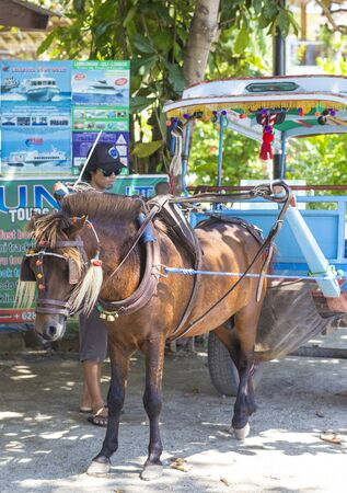 GILI ISLANDS, INDONESIA - MARCH 22: Gili islands are small tropical islands between Lombok and Bali islands.There are three islands: Trawangan, Memo, Air.