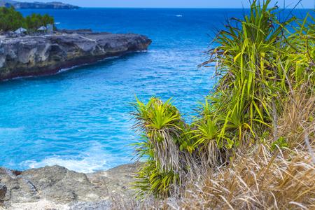 nusa: Tropical Coastline of Lembongan island.Indonesia.