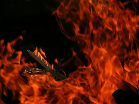 barbecues: Fire Stock Photo