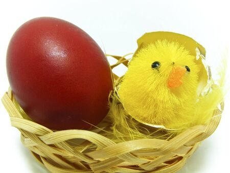 Egg Stock Photo - 2730064
