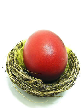 Egg colored Stock Photo - 2730075