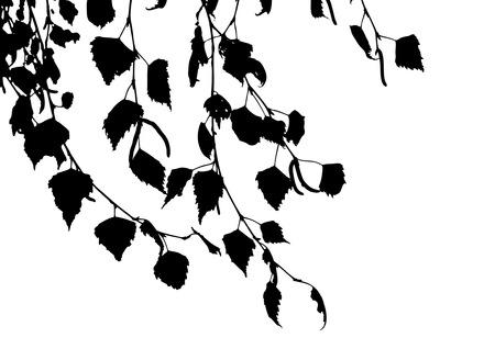 Autumn leaves vector Vector