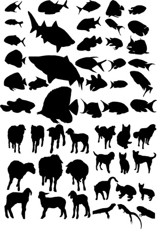Animal vector silhouettes Stock Vector - 4582370