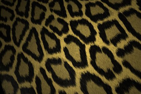 leather coat: Leopard skin texture