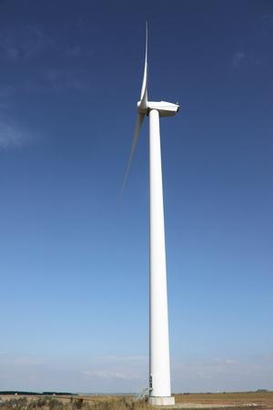 Wind generator field - outdoor renewable resource  photo