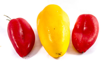 The bell pepper (also known as sweet pepper, pepper or capsicum) /ˈkæpsɪkÉ™m is a cultivar group of the species Capsicum annuum. Cultivars of the plant produce fruits in different colors, including red, yellow, orange, green, white, and purple. Bell peppers are sometimes grouped with less pungent pepper varieties as 스톡 콘텐츠